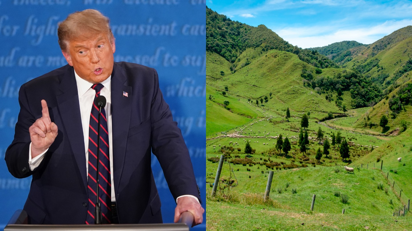 Google Searches for 'How to Move to NZ' Spiked During the Presidential Debate thumbnail