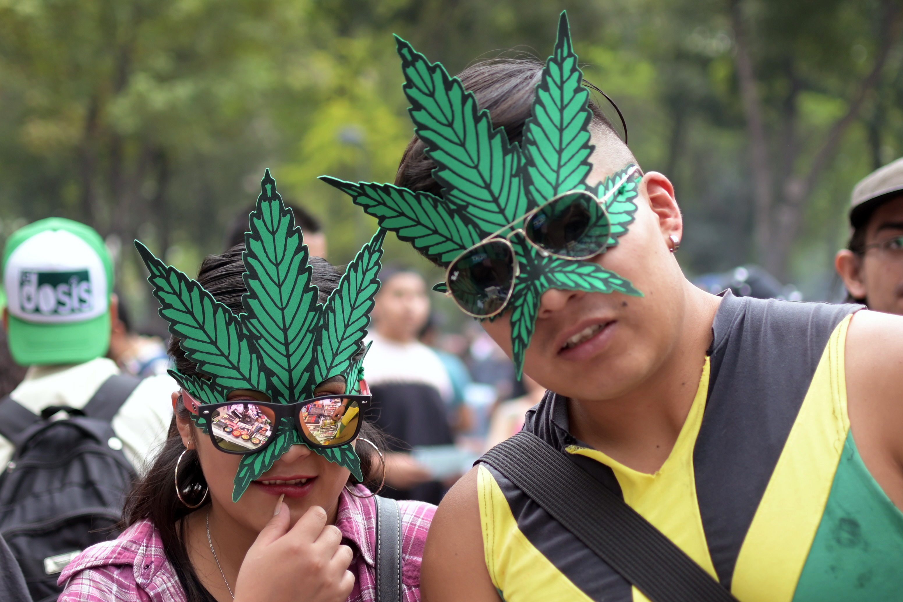 post-image-Mexican Weed Connoisseurs Are Concerned Legal Weed Might Not Be the Best Shit