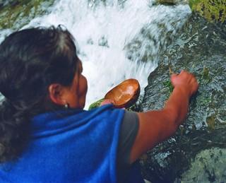 La chamane doit placer la pulpe de la feuille dans une gourde remplie d'eau de rivière, avant de tamiser le tout dans un gobelet en polystyrène.