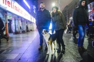 Câine la protest, Ozzi