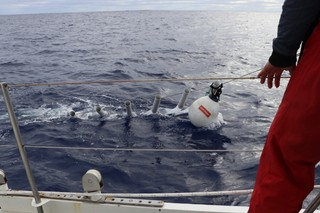 Vertical trawl