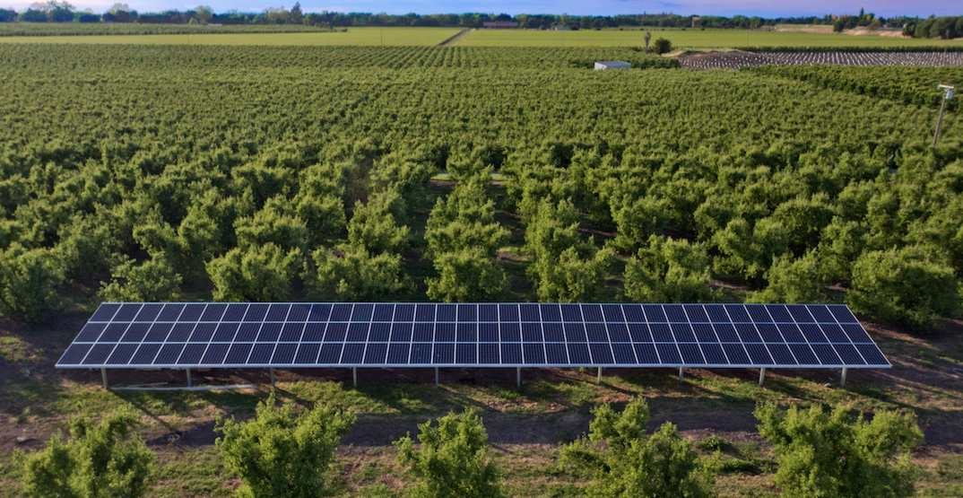 Farms Are Turning To Solar As Electricity Prices Soar