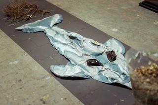 Detail van 'Zelfmoordbos', installatie van Lidewij Sloot