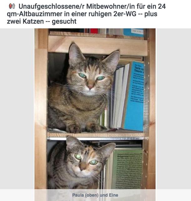 Frau sucht wg mit mann [PUNIQRANDLINE-(au-dating-names.txt) 52