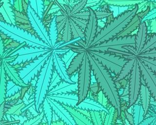 1490805656670-1490230522270-blue_weed_leaf