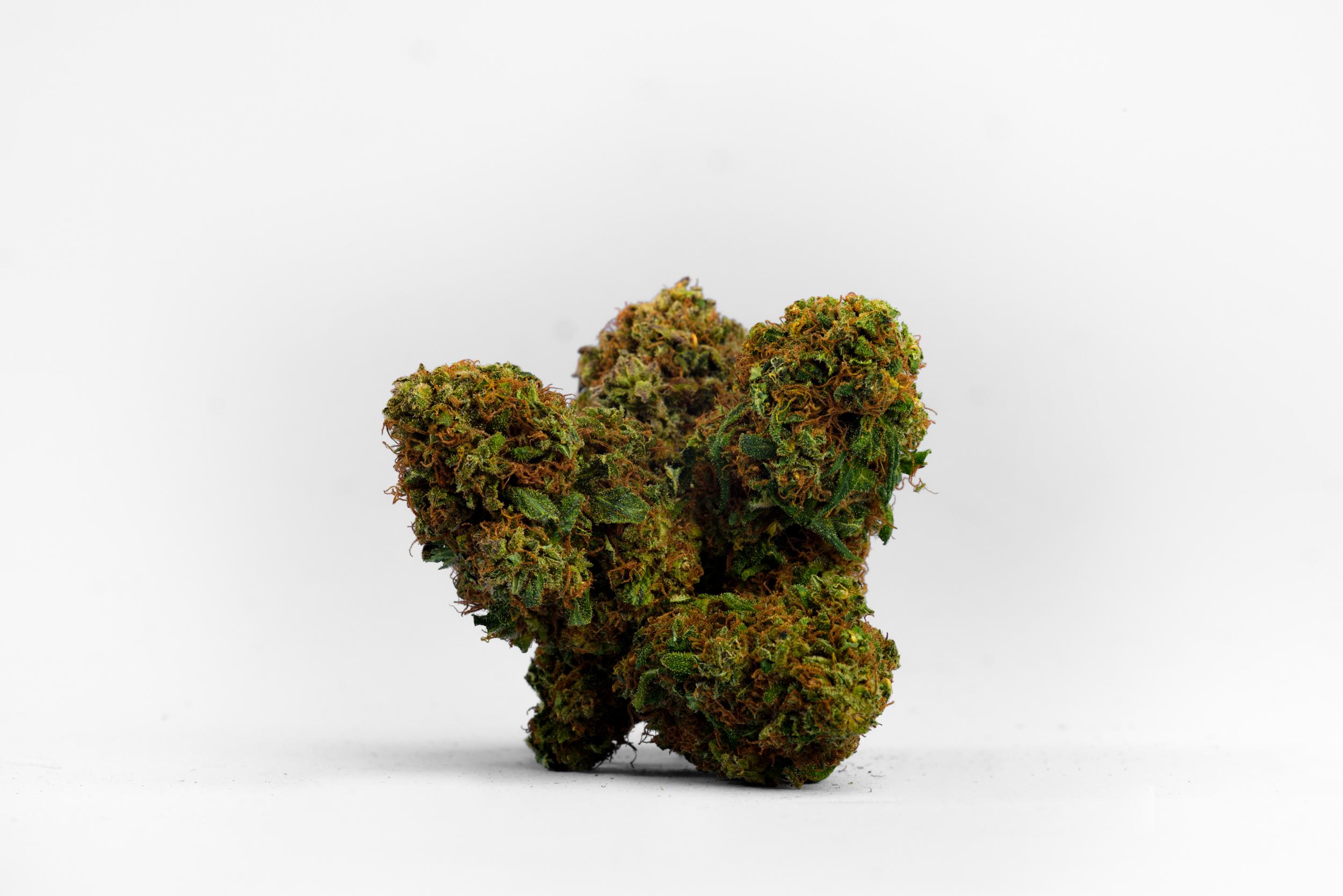 in wien kann man jetzt legales cannabis kaufen vice. Black Bedroom Furniture Sets. Home Design Ideas