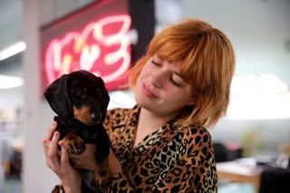 performances for pets mascotas animales