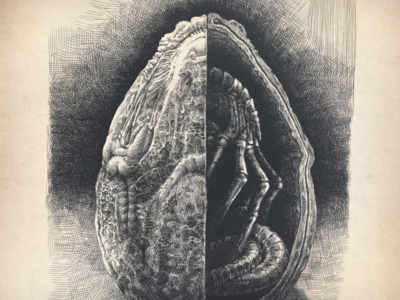 Das Schöne an \'Alien\' - VICE