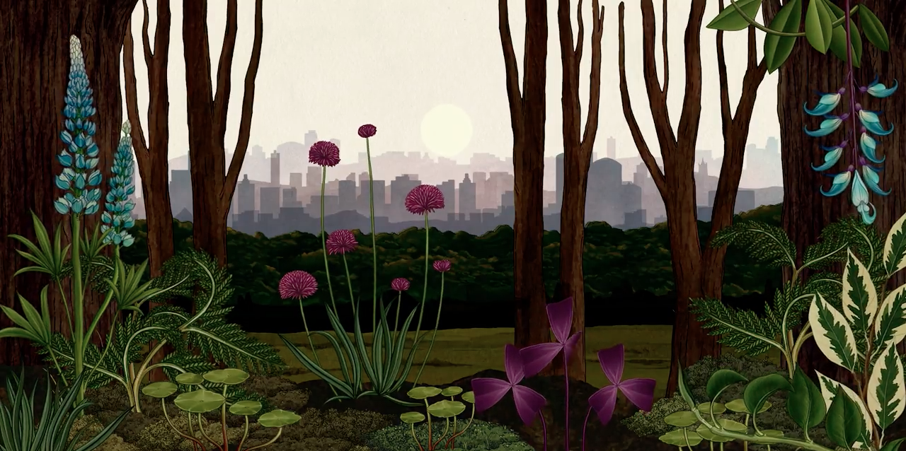 story of flowers u0027 tells an epic animated tale of life and death