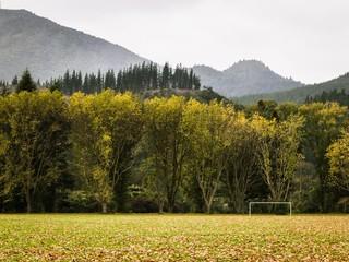1496046168225-kawerau-goal