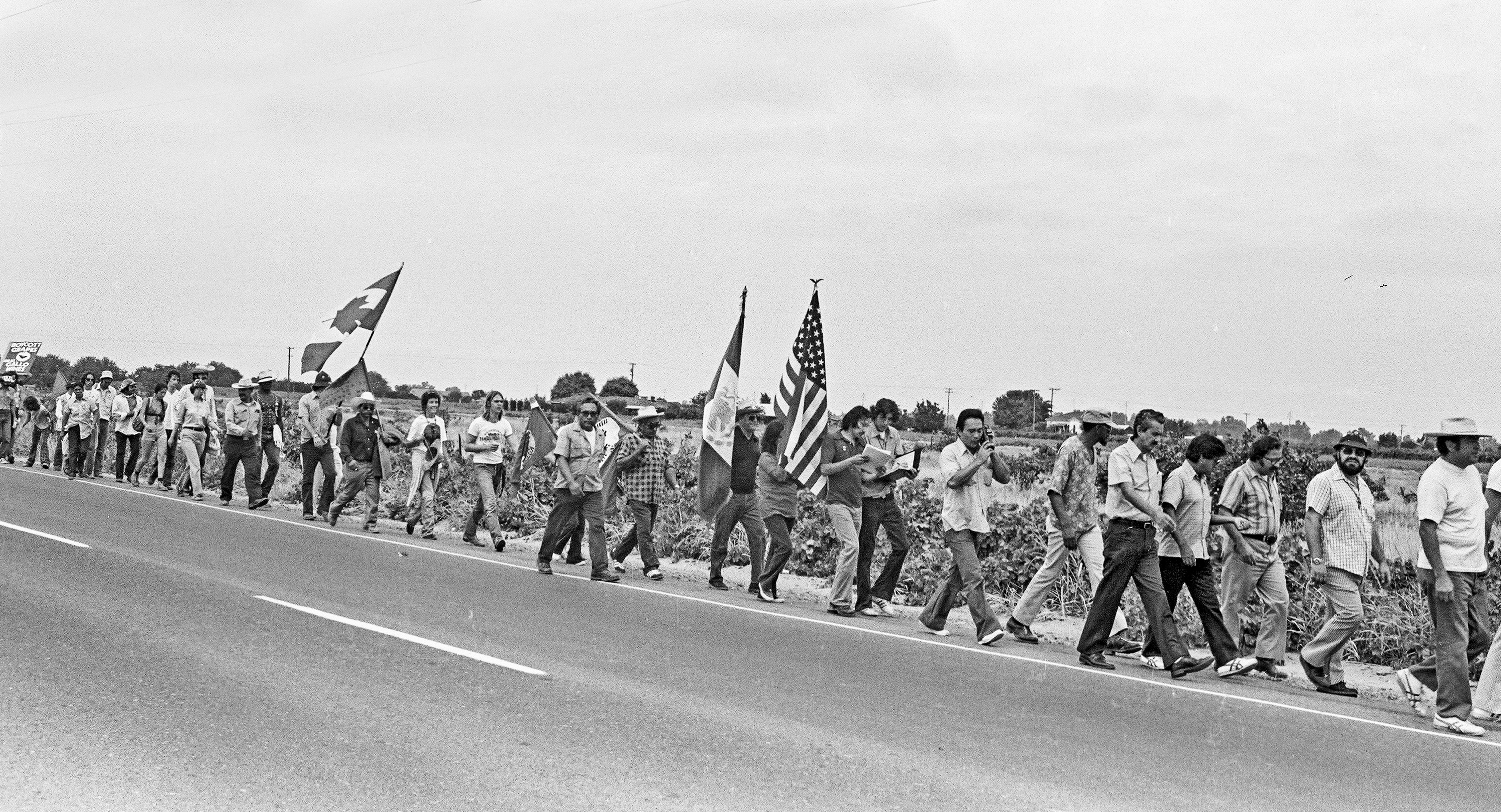 united farm workers essay United farm workers of america (ufw), us labour union founded in 1962 as  the national farm workers association by cesar chavez, a migrant farm  labourer.