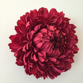 These incredibly realistic flowers are actually made of paper vice turners the fine art of paper flowers will be released on august 22 2017 her work is currently on view at the asian art museum as part of the flower mightylinksfo