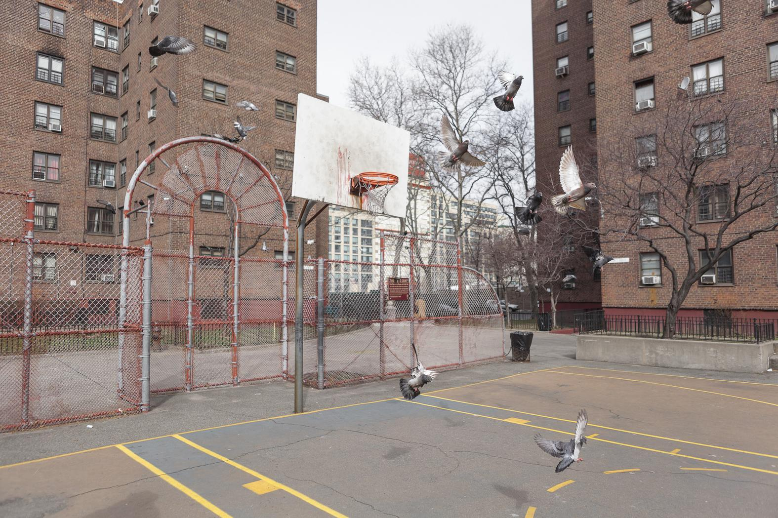 these are the most beautiful basketball courts in the world vice