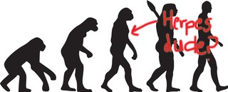 1508979387767-herpes-chimps-sti-std-evolution