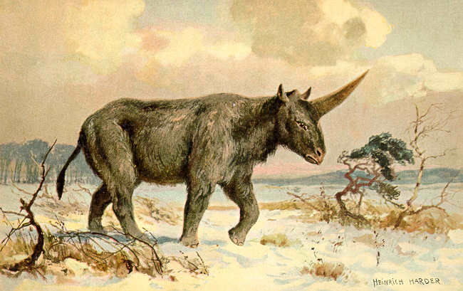 Unicorns Were Real And Ugly As Hell