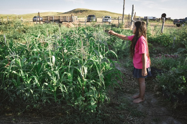 Inside the Lakota Sioux's Fight for Food Sovereignty - VICE