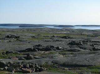 fosil más antiguo del mundo en canada quebec
