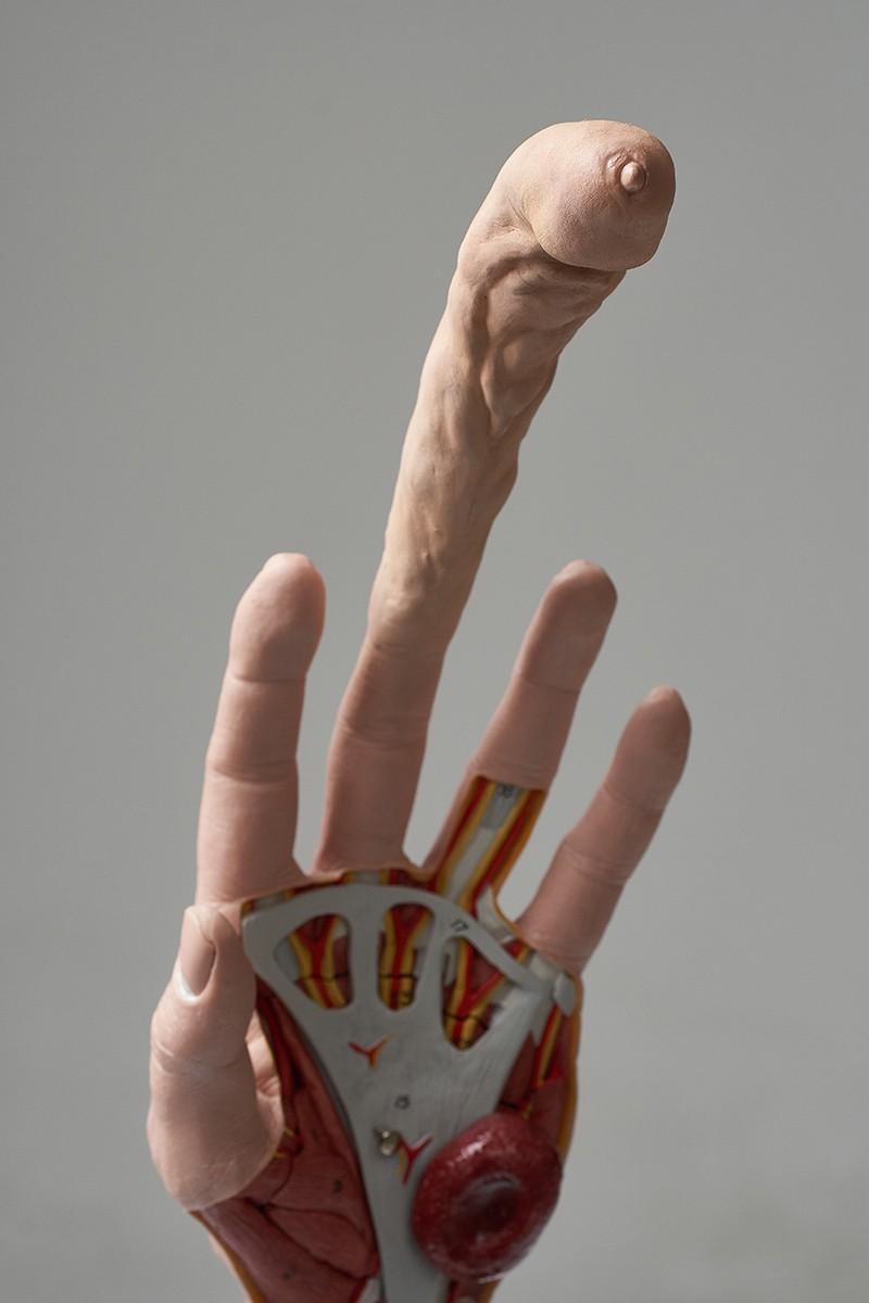 vârful degetului penisului