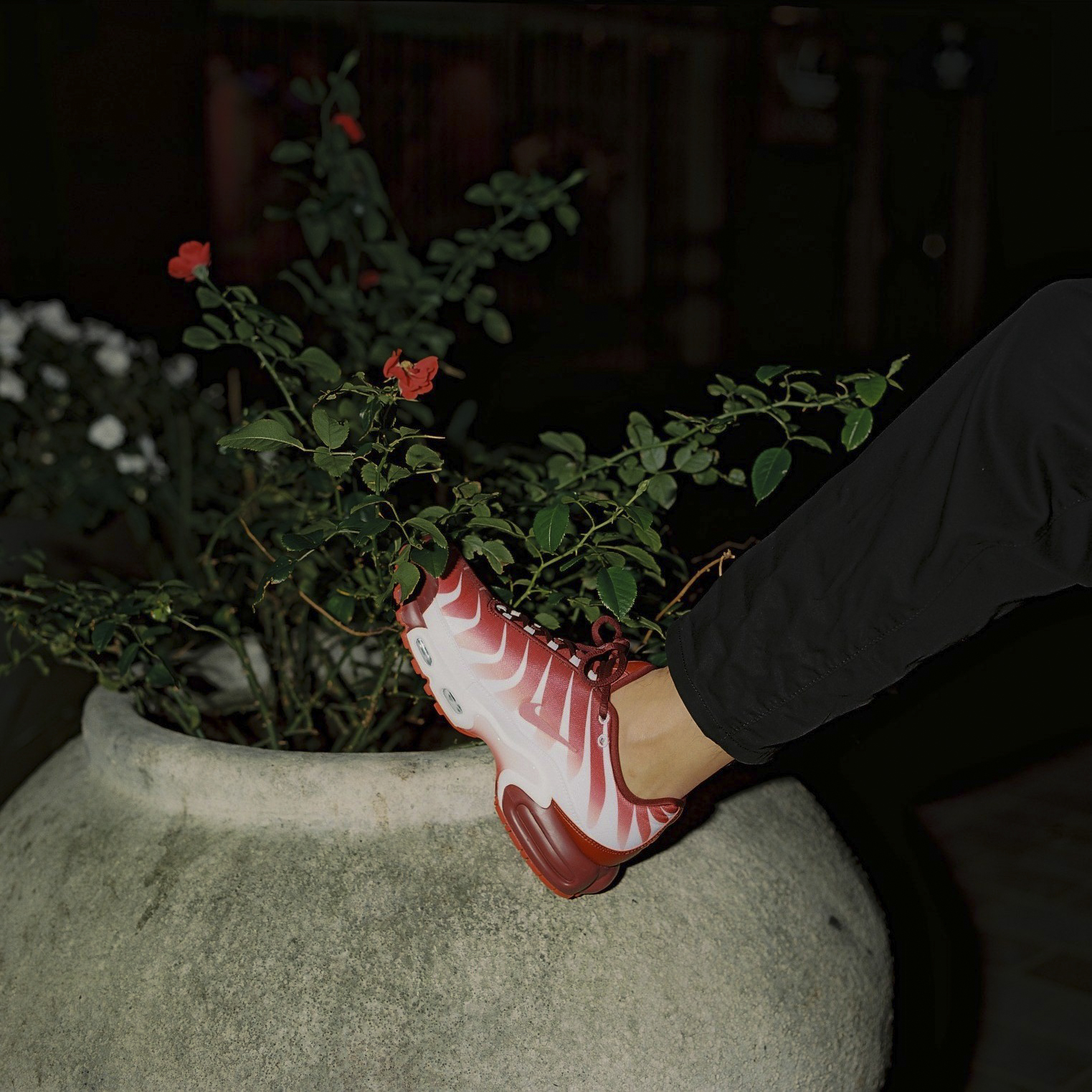 Nike Air Max Plus 'Before the Bite' and 'After the Bite