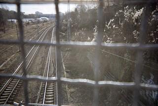 Schienen von der Straße aus fotografiert