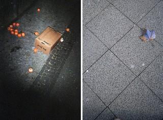 Obst liegt verschüttet auf den Straßen Berlins
