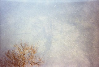 Ein Baum spiegelt sich im flachen Wasser, fotografiert vom Obdachlosen Lukasz aus Polen