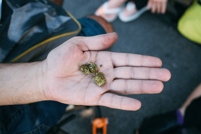 Especial Vice: A legalização da cannabis no Brasil pode reparar danos históricos