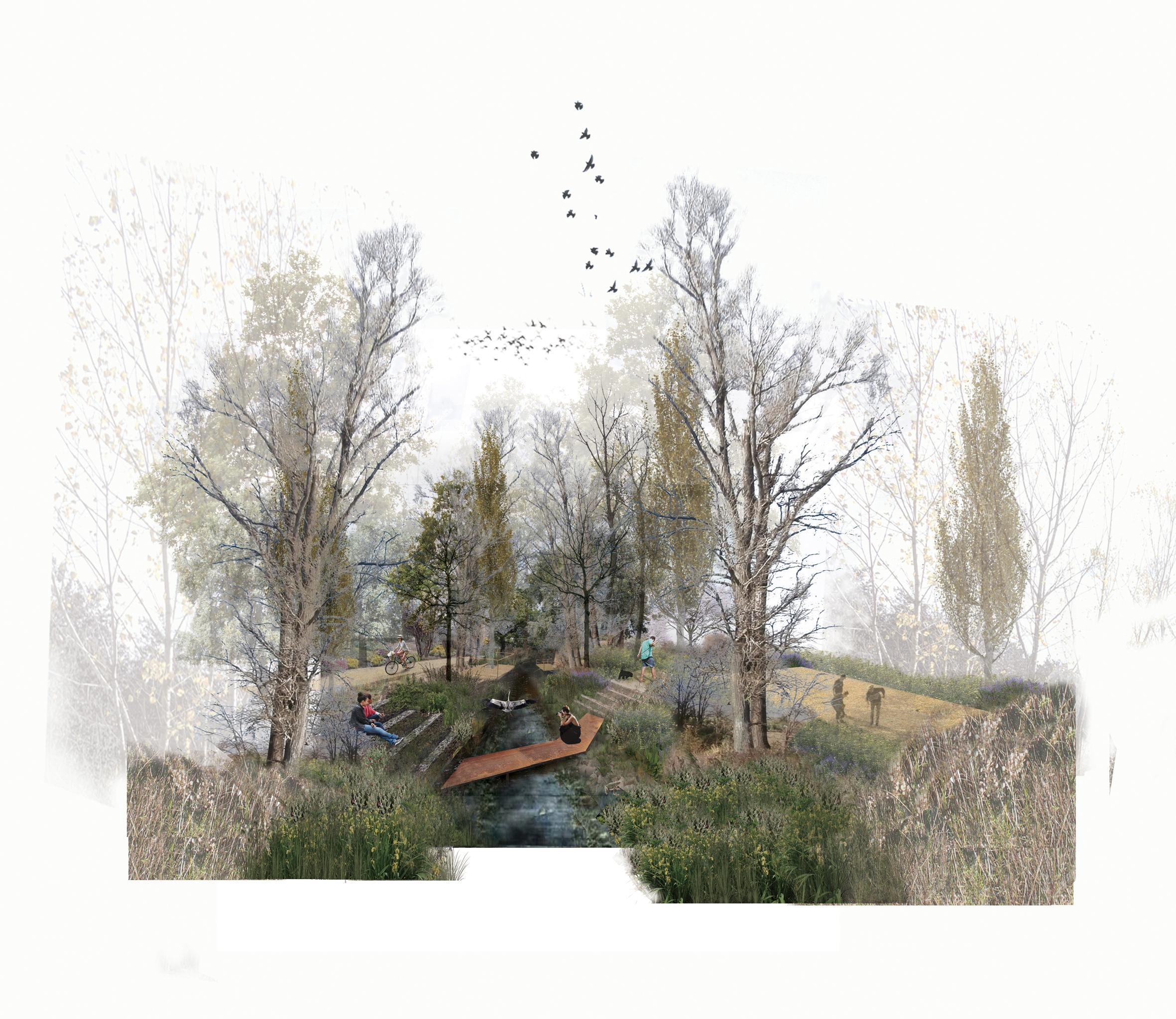 1524596228620 03 topio7 eco corridor riparian forest