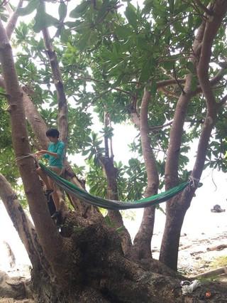 Die Autorin hängt ihre Hängematte zwischen Palmen auf