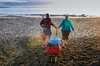Sylvia Durrant und Annwyne Standish ziehen einen Bollerwagen voller Pinguine an den Strand