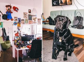 Bei den Rocket Beans ist selbst Bürohund Dean ein Social-Media-Star. Hier posiert er mit einer Spielzeugwaffe