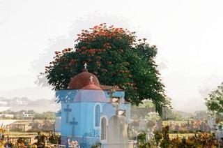 Ein blühender Baum überlappt mit einer Friedhofszenerie
