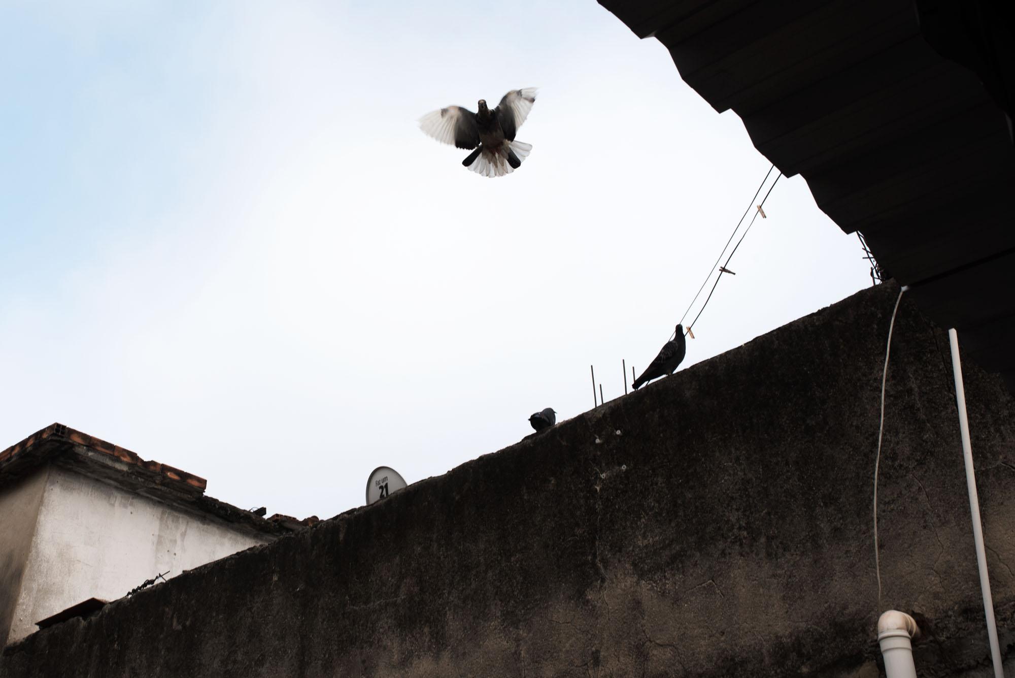 Sabine van Wechem - fotoreeks Fica Suave - Vila Cruzeiro favela - Rio de Janeiro - duiven