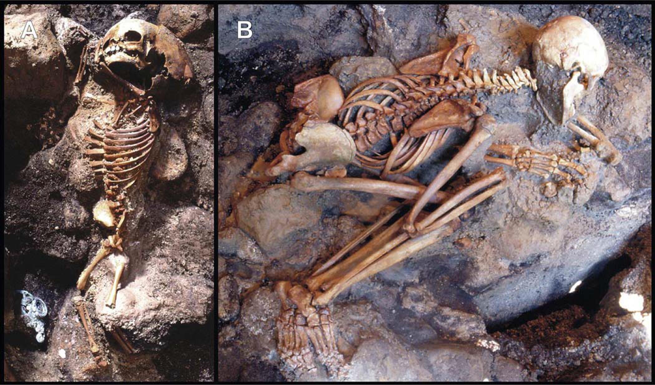 Skelette aus Herculaneum.