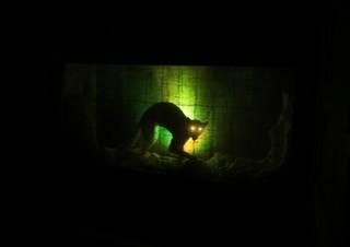 1539213554112-Spooky-Animal-Encounter-Ark-Encounter