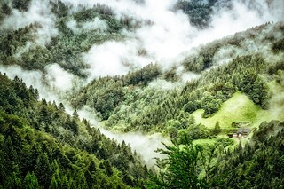 1539529573829-Waldeinsamkeit-Traditional-German-Wellness-Cure-for-Stress-