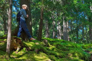 Forest-Bathing-Sussex