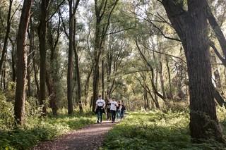 Ultras Almere wandelt door een bos.