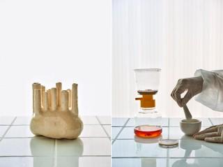 Sinae Kim, 'This is Urine'