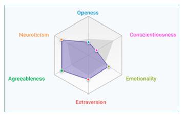 Retorio personality analysis image