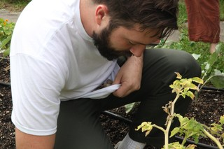 Aaron Crowder picking husk cherries
