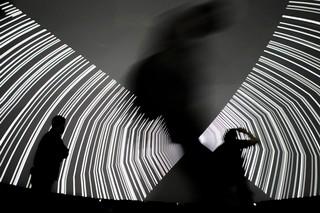 Sonar D Festival