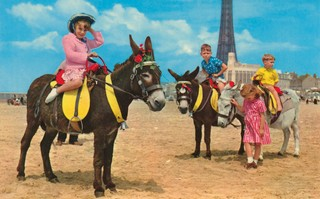 Donkey rides in Blackpool Sands. Photo: John Hinde Archive (Copyright)