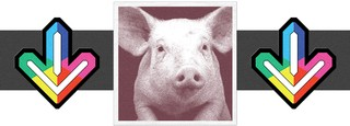 1539959152985-pigs
