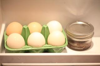 eggs in ceramic egg carton