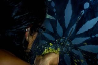 arte con cannabis