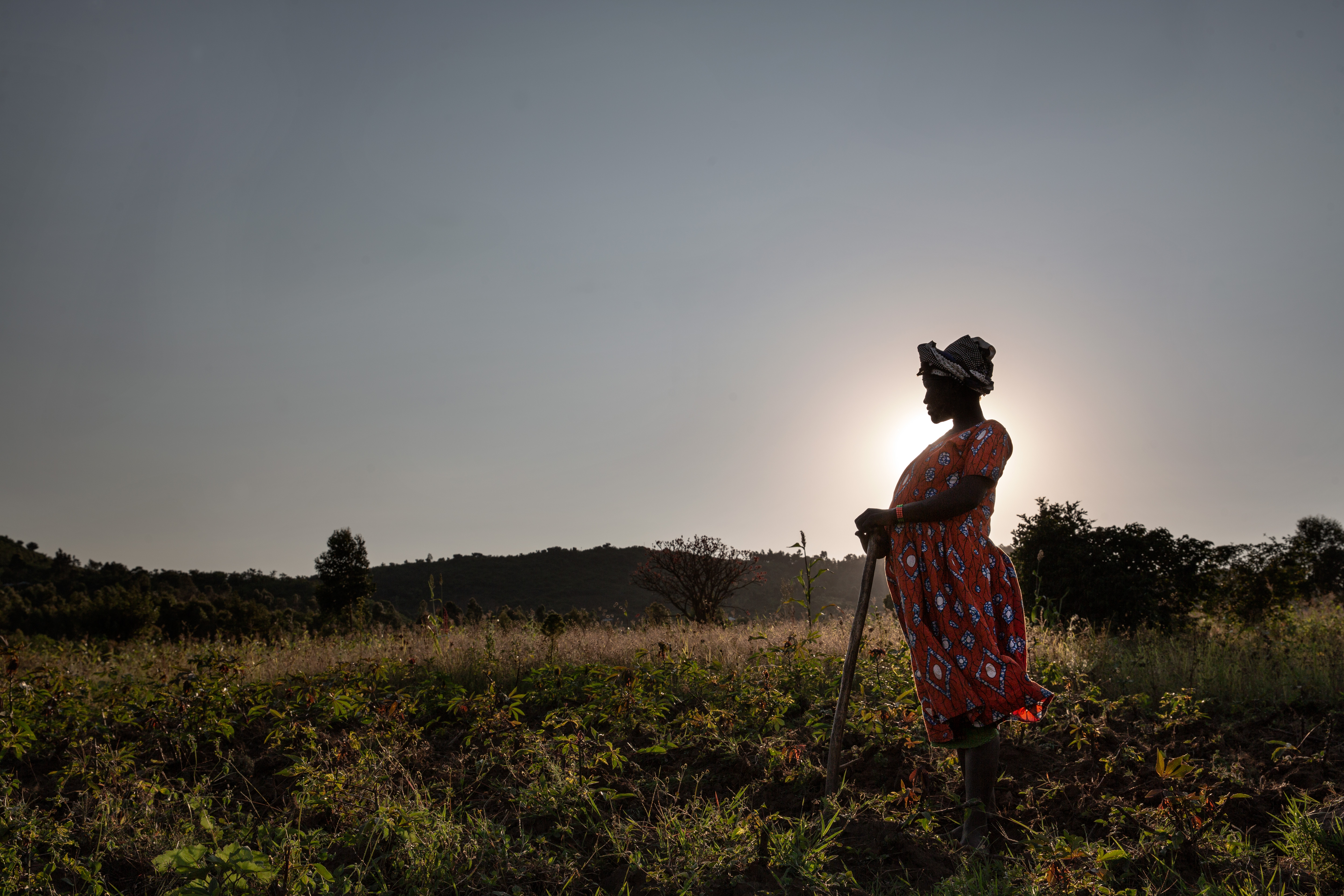 Pregnant woman standing silhouetted against the sun