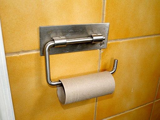 Empty toilet paper roll. Wikimedia Santeri Viinamaki
