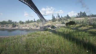 rdr2-bridge