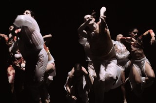 Dancers in Cottweiler